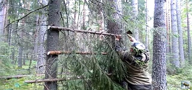 Охота на медведя. Как мы к ней готовимся