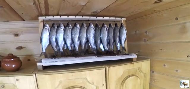 Как вялить рыбу. Простой способ